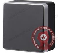 WL15-01-03/ Выключатель одноклавишный проходной Gallant (черный с серебром)
